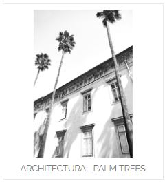 Architectual Palm Tree von David & David Studios