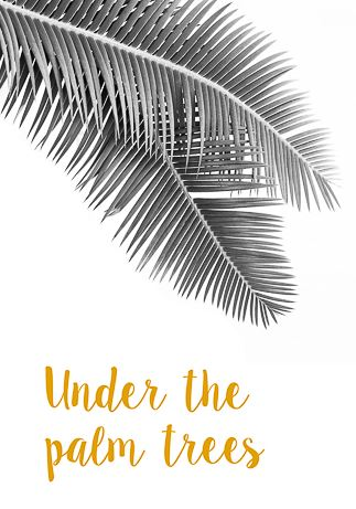 Under the palm trees von David & David Studios