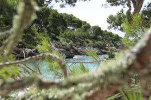 kristallklares Wasser in einer kleinen Bucht