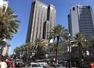 Palmen im Großstadtjungel