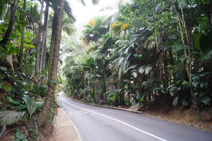 Straße auf den Seychellen im indischen Ozean