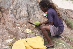 Kokosnuss auf den Seychellen wird bearbeitet