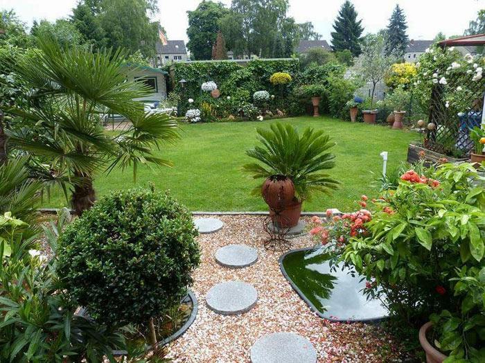 Palmen in Deutschland, Cycas revoluta und die Trachycarpus fortunei zieren diesen schönen Garten in Oberhausen
