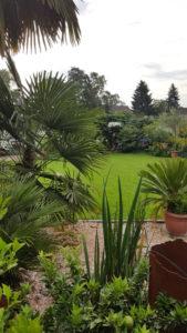 Palmenbegeisterung im Pott