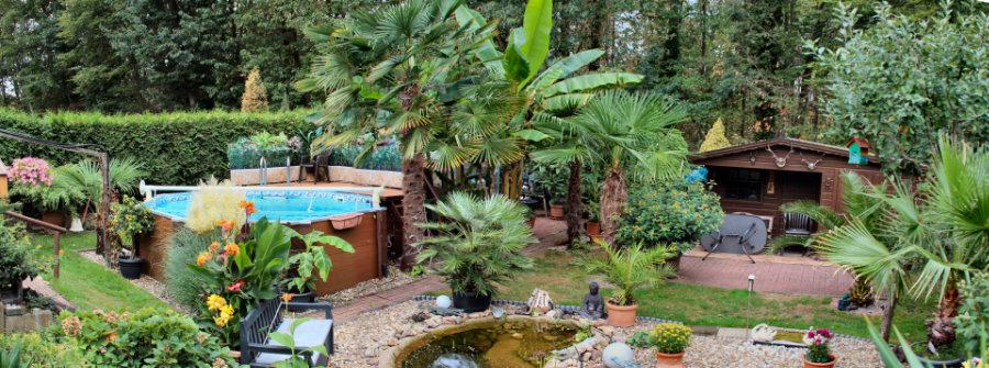 Bild mit großem Ausschnitt aus dem Garten um zu zeigen wie er sich entwickelt hat