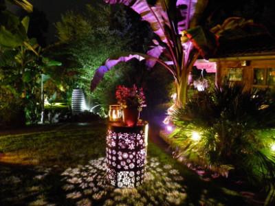 Stimmungsvolles Licht im Garten