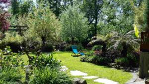 Baumfarn an rechter Seite neben einem Weg über den Rasen. In der Mitte steht ein Liegestuhl