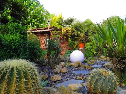 Beet mit Goldkugelkaktus und Blick auf das Gartenhaus