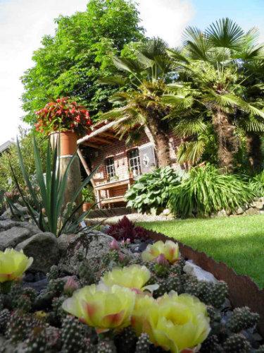 Gartenhaus von Palmen umgeben mit gegenüber liegendem Kakteenbeet