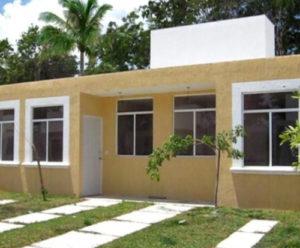 Bild: Haus und die selbstgepflanzten Kokospalmen in Mexiko hinter dem Haus