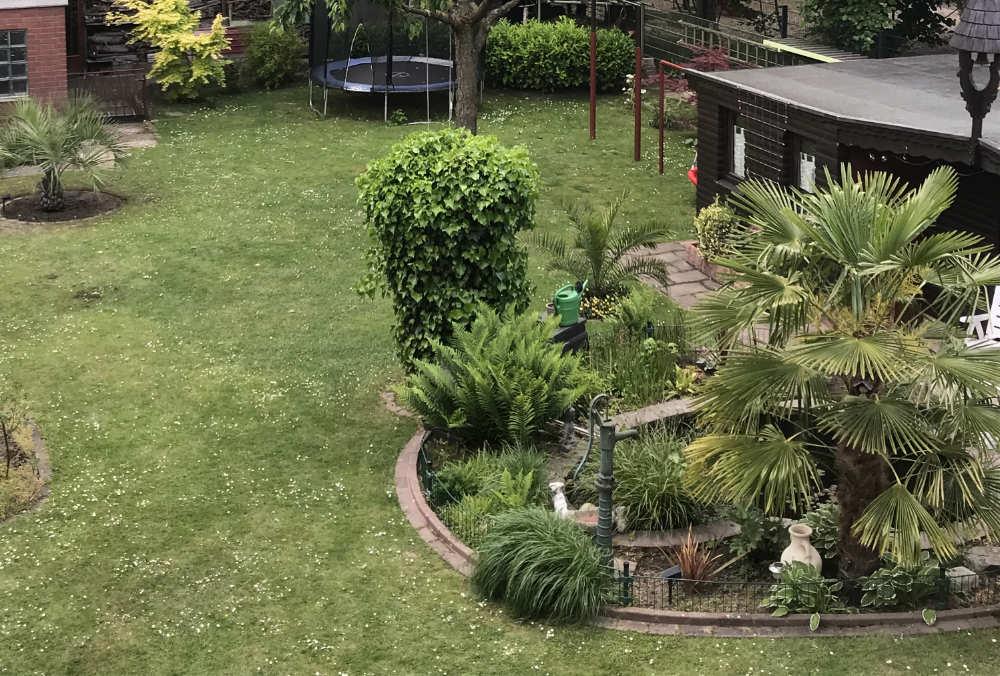 Bild aus dem Mai 2020 mit Sicht von oben in den Garten